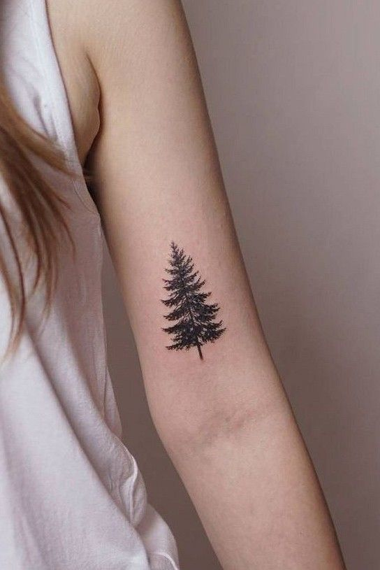 Photo of 35+ Exquisite Tattoos on The Tree of Life – HomeLoveIn