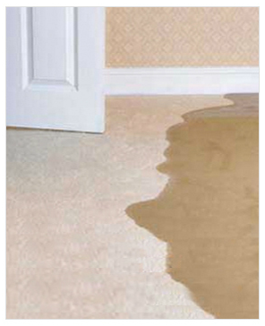 Check Out The 3 Categories Of Water Damage Water Damage Repair Water Damage Water Damage Company