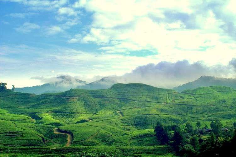 23 Pemandangan Gunung Di Bogor Pemandangan Dari Kamar Memang Mempesona Tersedia Kamar Dengan Pemandangan Gunung Ataupu Di 2020 Pemandangan Wisata Asia Wisata Budaya