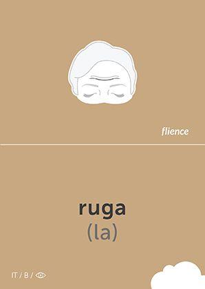 Ruga #CardFly #flience #human #italian #education #flashcard #language