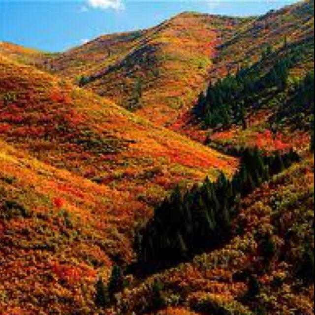 Park City Utah Fall Colors Gorgeous Canoe Mountain Bike Tent Yes Please Park City Utah Park City Cities In Utah