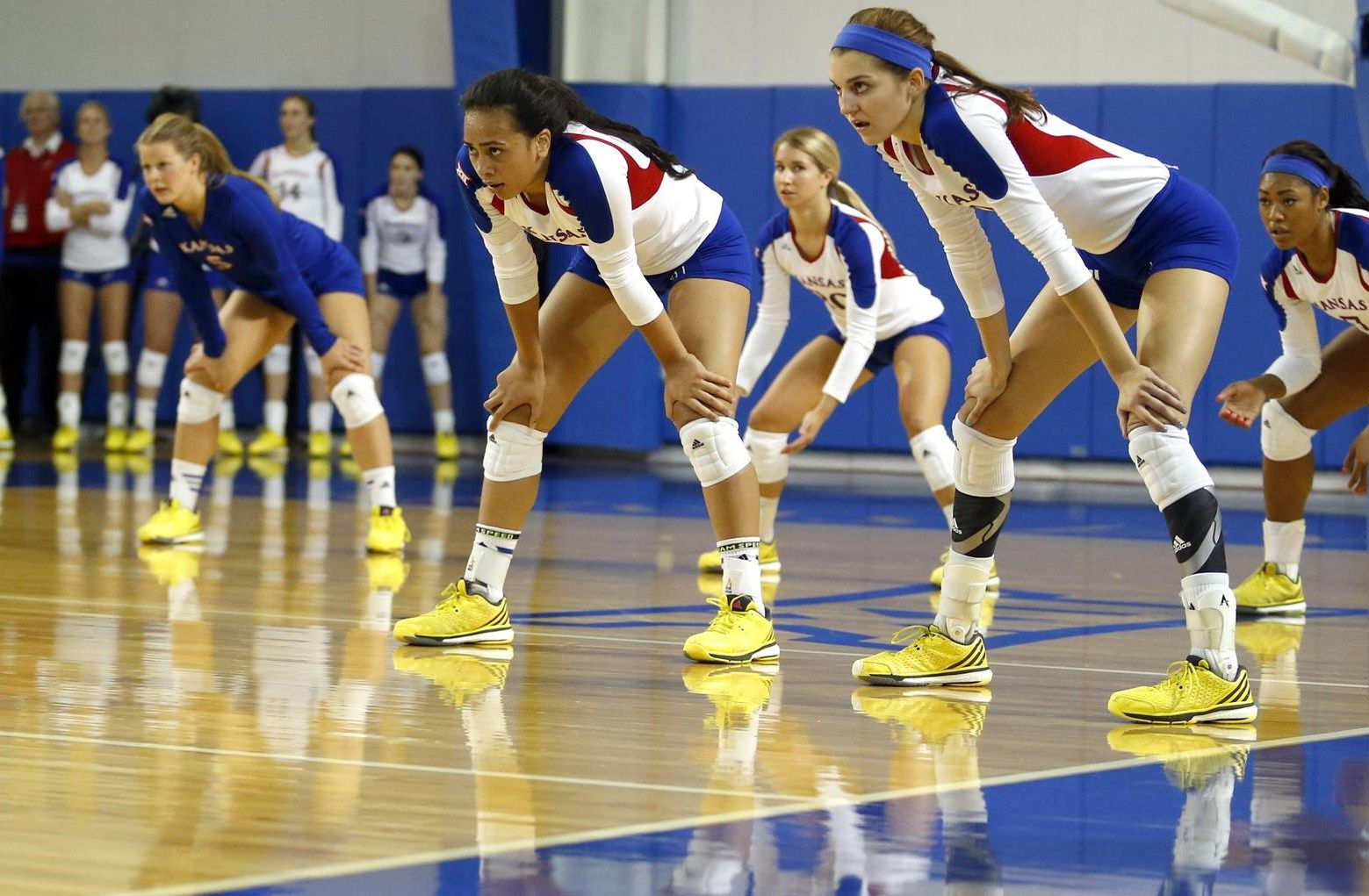 2015 Ku Volleyball Schedule Google Search Volleyball Basketball Court Sports