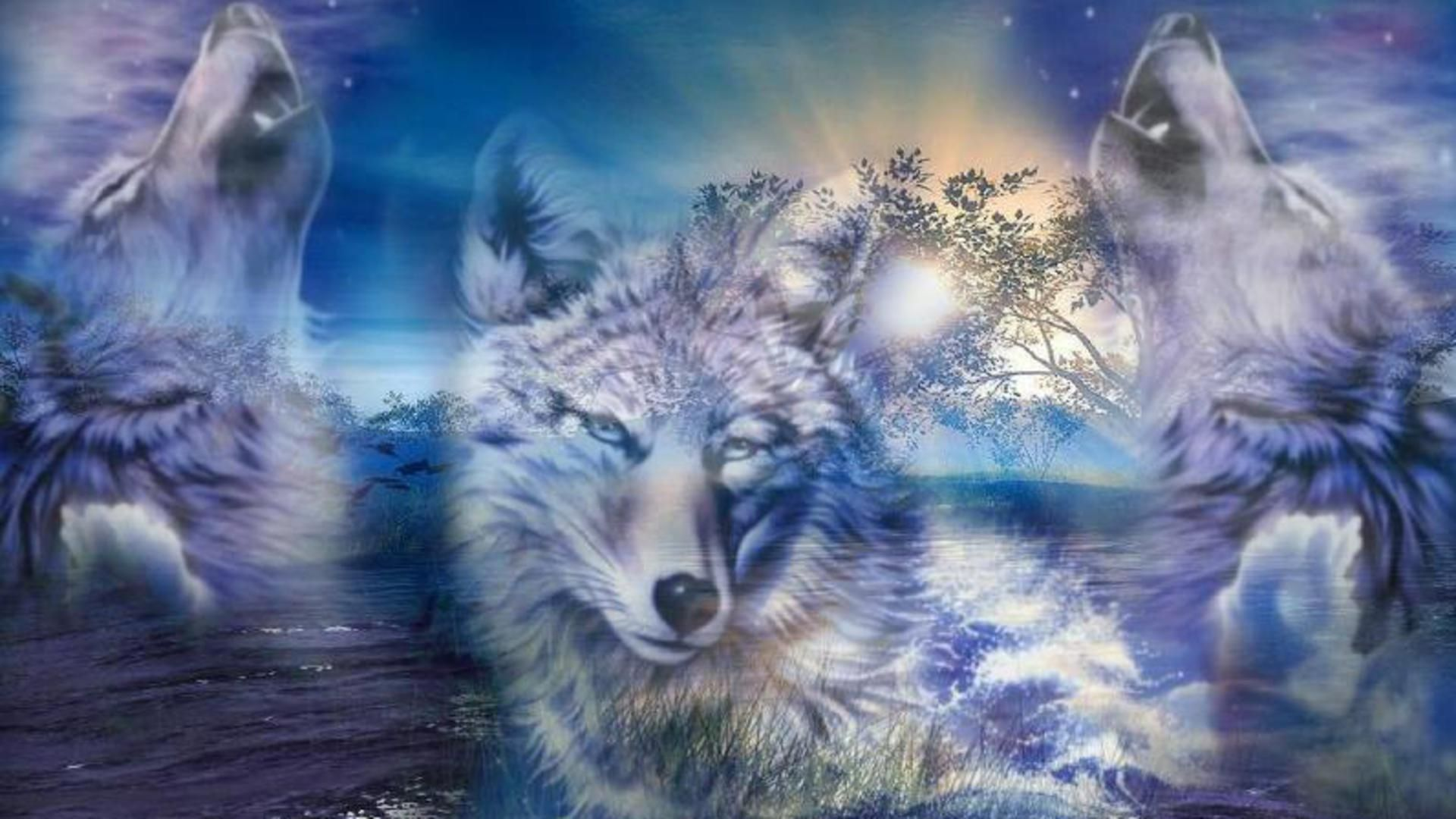 3D Wolf | 3D Wolf Computer Wallpapers