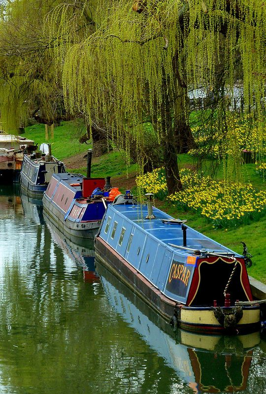 narrow boats on the cam at cambridge transport canal boats rh pinterest com