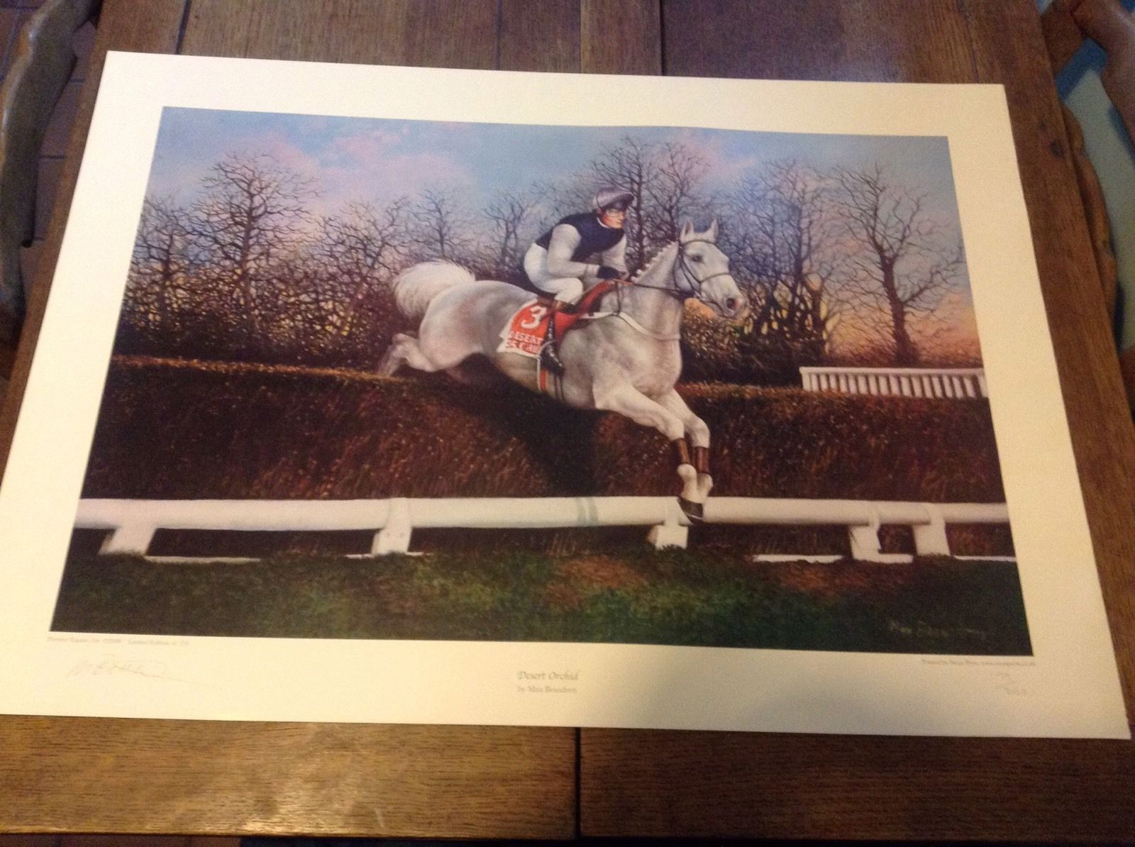 Desert Orchid Signed Print 199/250 By Max Brandrett   eBay