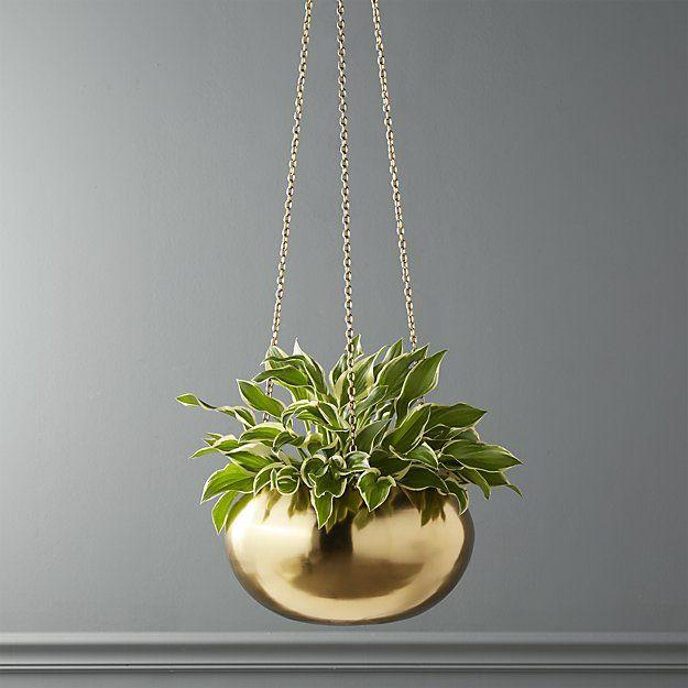Raj Gold Hanging Planter Reviews Cb2 Hanging Planters Hanging Plants Hanging Plants Outdoor