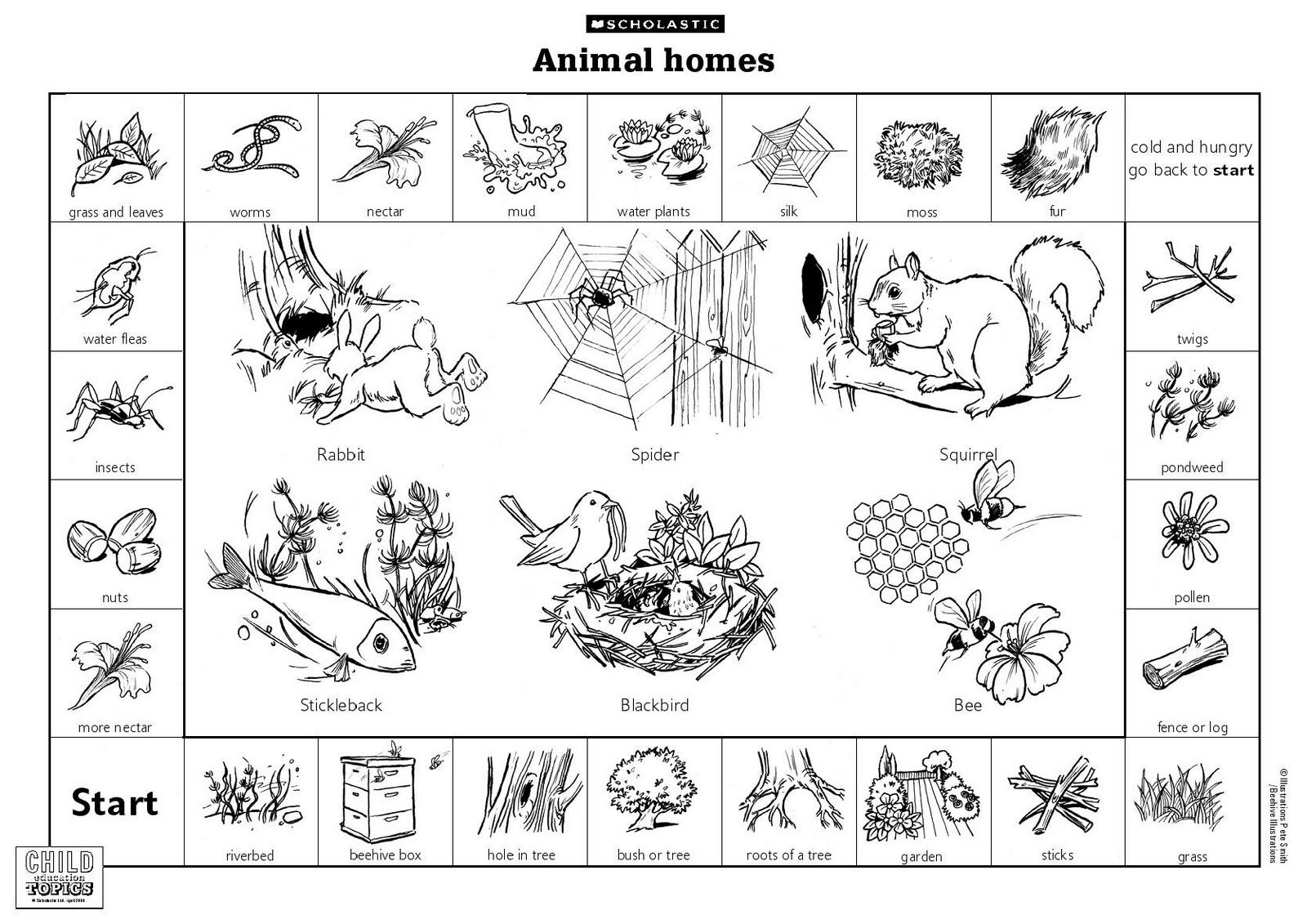 Animal Habitats Printables
