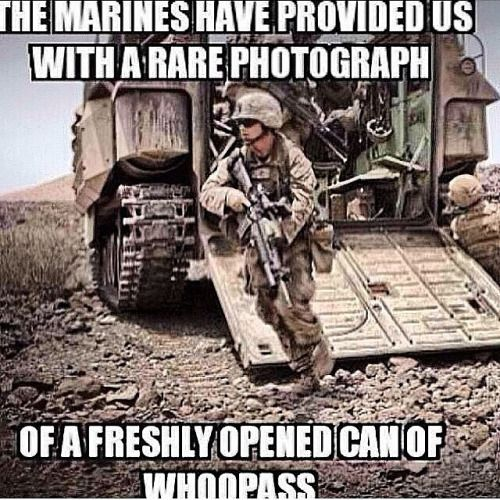 Usmc Quotes Marines Dropping Panties Since 1775  Google Search  Usmc .
