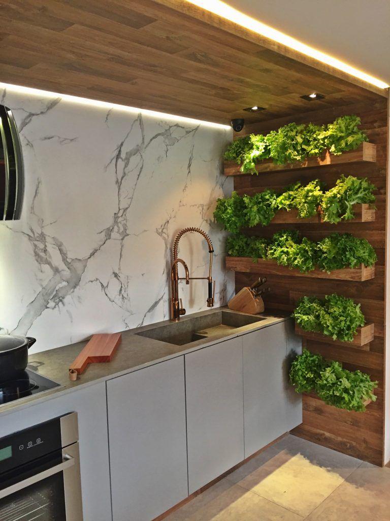 casa cor paraíba - cozinha e sala de estar - horta hidropônica ...