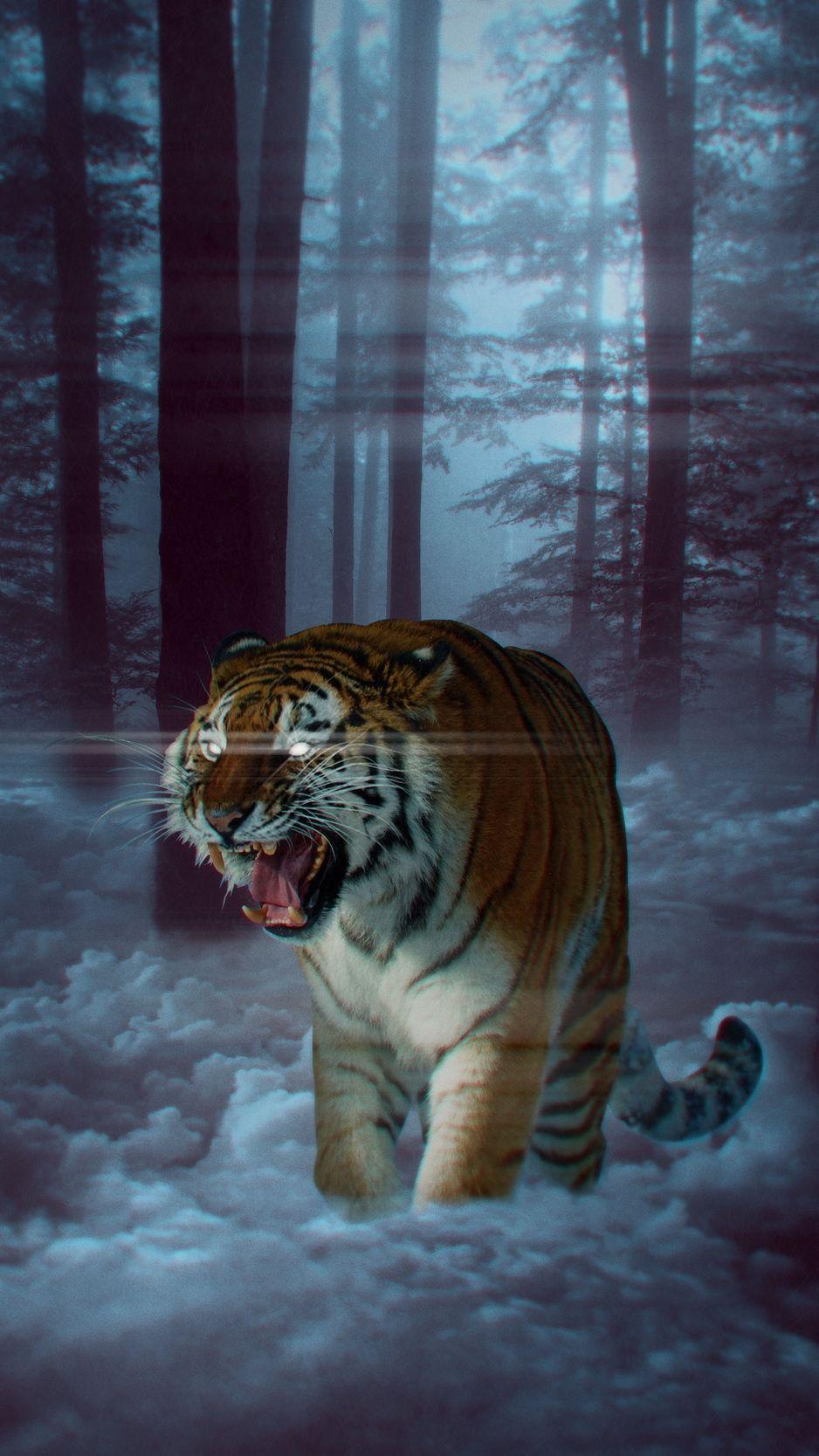 Iphone Xs Max Animal Wallpaper In 2020 Animal Planet Animal Wallpaper Animals