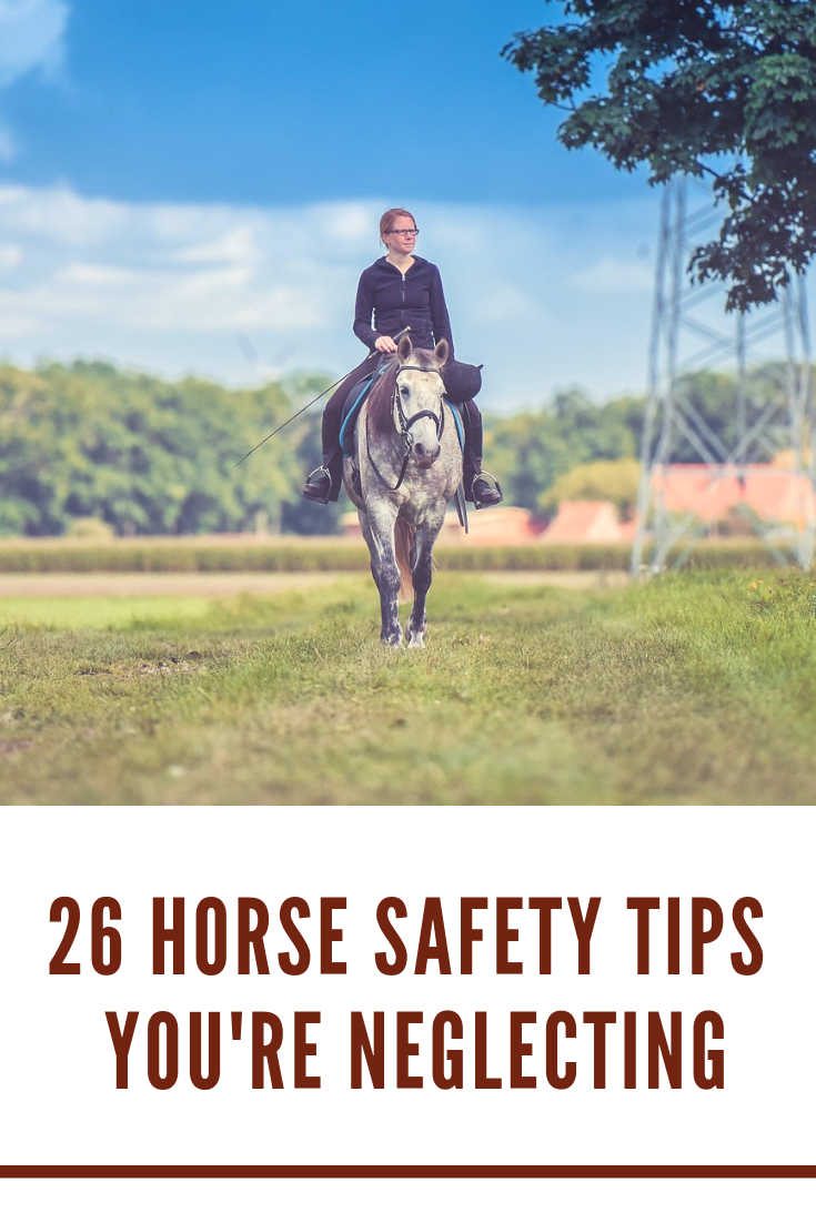 26 Horse Safety Tips for Beginners Horses, Horse riding