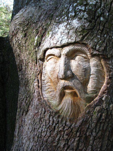 Tree spirit saint simons island trees pinterest