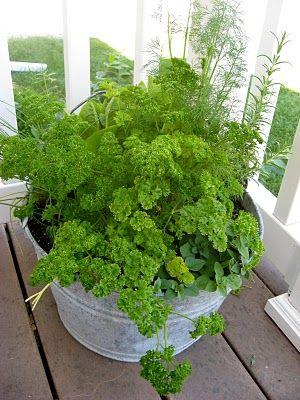 Time To Garden Kitchen herb gardens Square foot gardening and