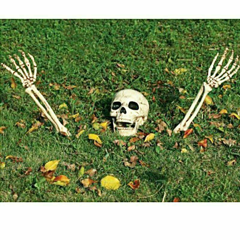 3pc Menschliches Skelett Kopf Und Hand H Ngen Sch Del Halloween