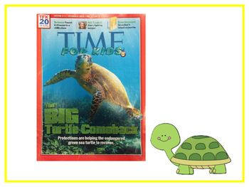 Teach Prompt Writing Informative Essay Time For Kids Big Turtle