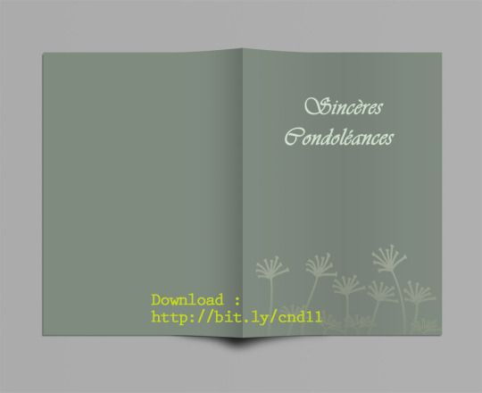 Modele Carte De Condoleances A Imprimer Gratuit Pour Ms Word Carte Condoleances Carte Sinceres Condoleances