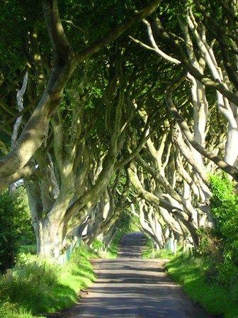 Irlanda de ensueño