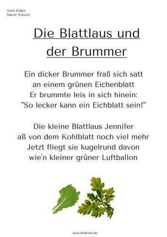 Kindergarten · Gedicht Frühling Laus Käfer Kitakiste