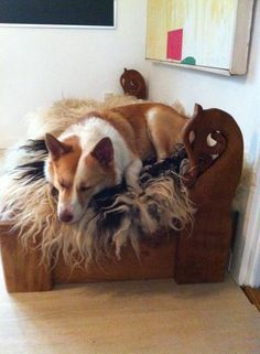 Viking bed for two icelandish sheepdogs.