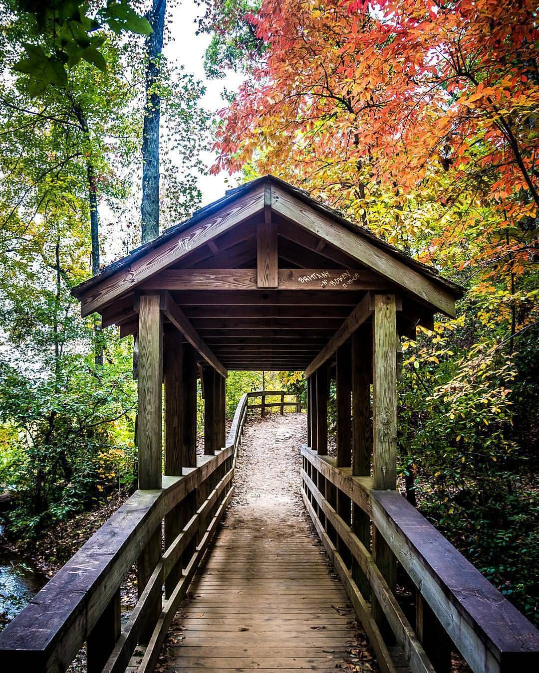 Loving the fall colors. Here's a covered bridge at Issaqueena Falls.   by chrsbrrss  // yeahTHATgreenville