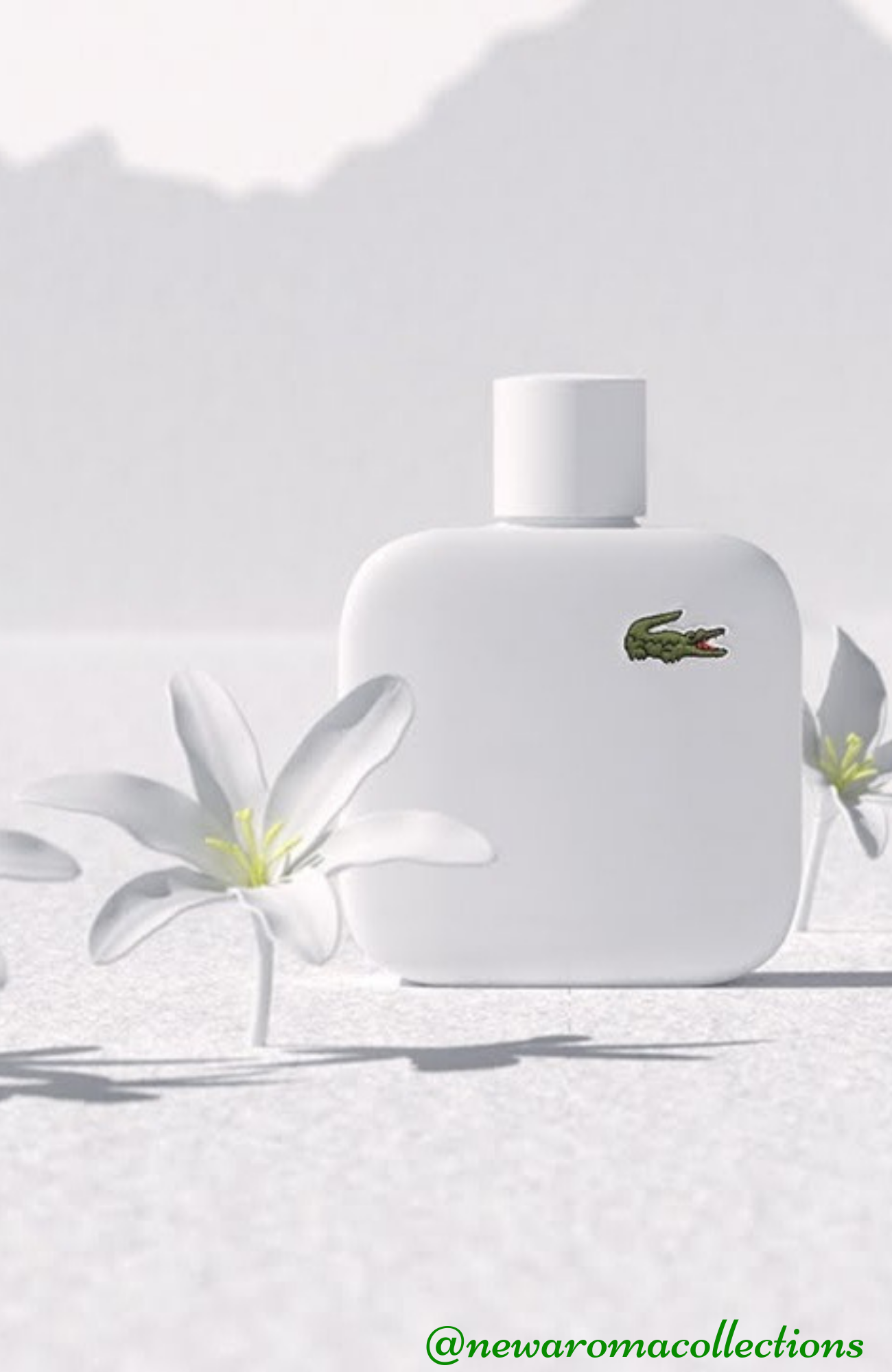 Men Who Want To Display The Ultimate In Timeless Sophistication Wear The Fragrance Of Lacoste Eau De Lacoste L 12 12 B Perfume Fragrances Perfume Pure Products