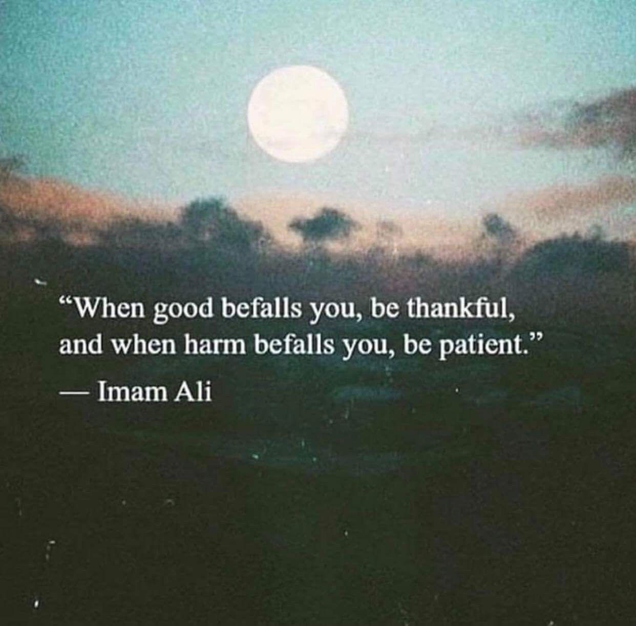 Pin by Hasnain Abidi on Imam Ali a s quotes | Islamic quotes