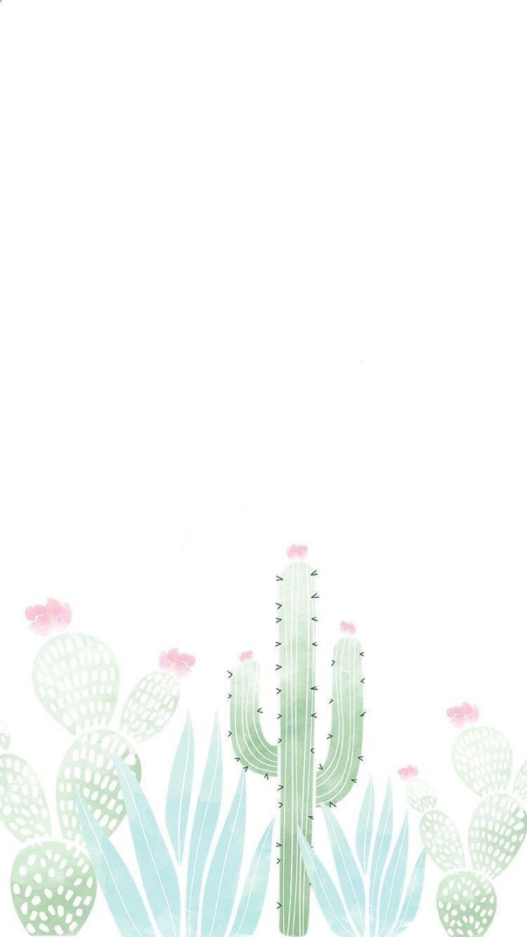 Pin By عازفة الأمل On Cactus Pretty Wallpapers Iphone Wallpaper Backgrounds Phone Wallpapers