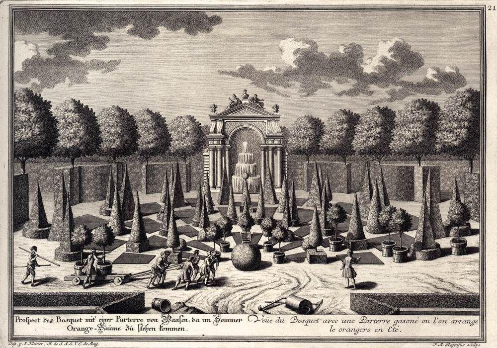 Orange Grove -  c. 1738 - Salomon KLEINER,  Engraving -  Österreichisches Museum für angewandte Kunst, Vienna