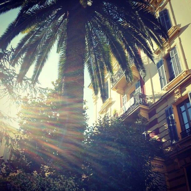Cannes rayonne