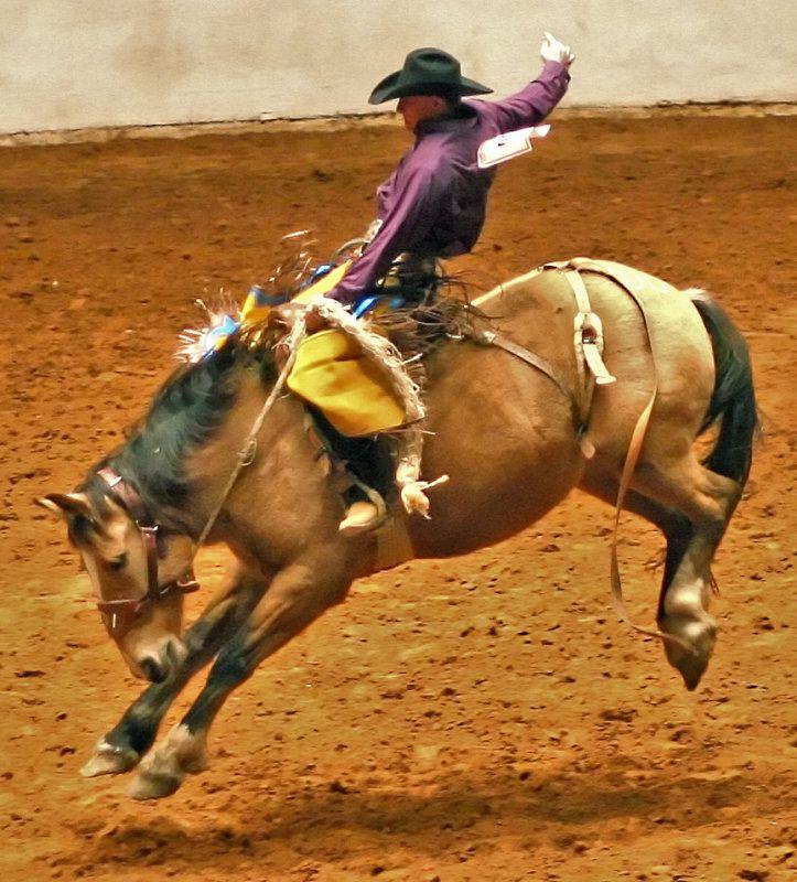 Pin On ★ Texas Life