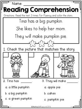 Reading Comprehension Passages For Beginning Readers (FALL