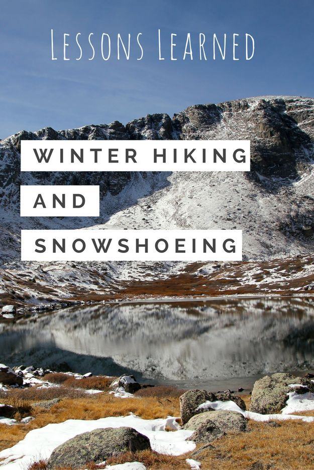 Photo of Tips for Snow Hiking and Snowshoeing • Fox in the Forest