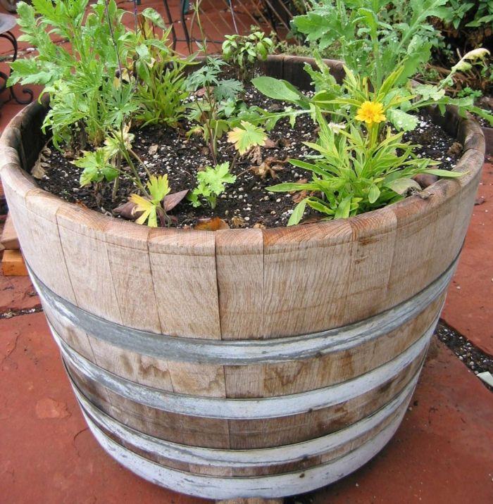 Elegant Gartendeko Ideen Garten Pflanzen Fäßer Pflanzengefäße