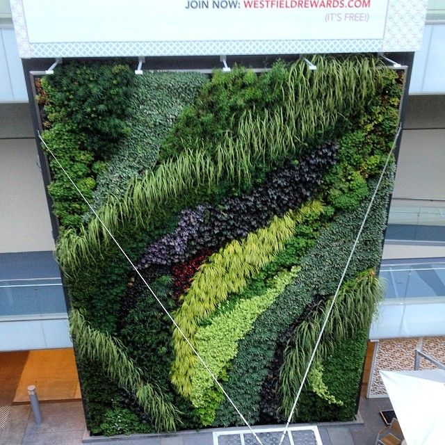 An indoor living wall system literally gives you a breath