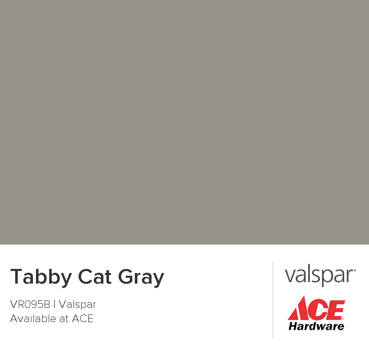 Tabby Cat Gray From Valspar Valspar Paint Colors Color Chip Valspar