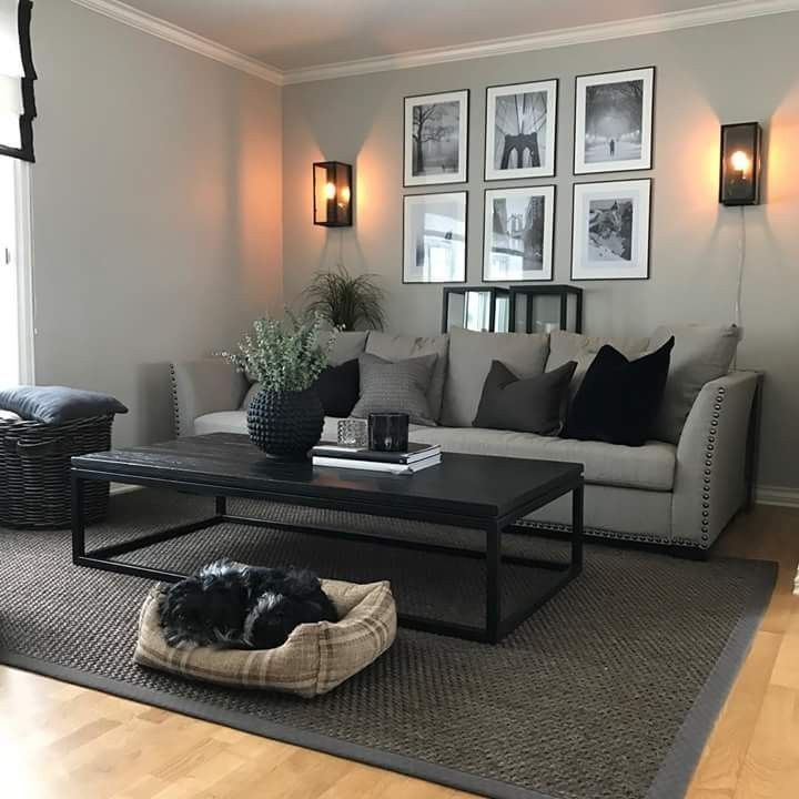 Dog friendly #friendly #apartmentlivingrooms