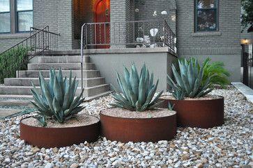 plants in buckets backyard