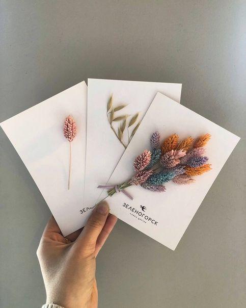 открытки с сухоцветами своими панели алюкобонд это