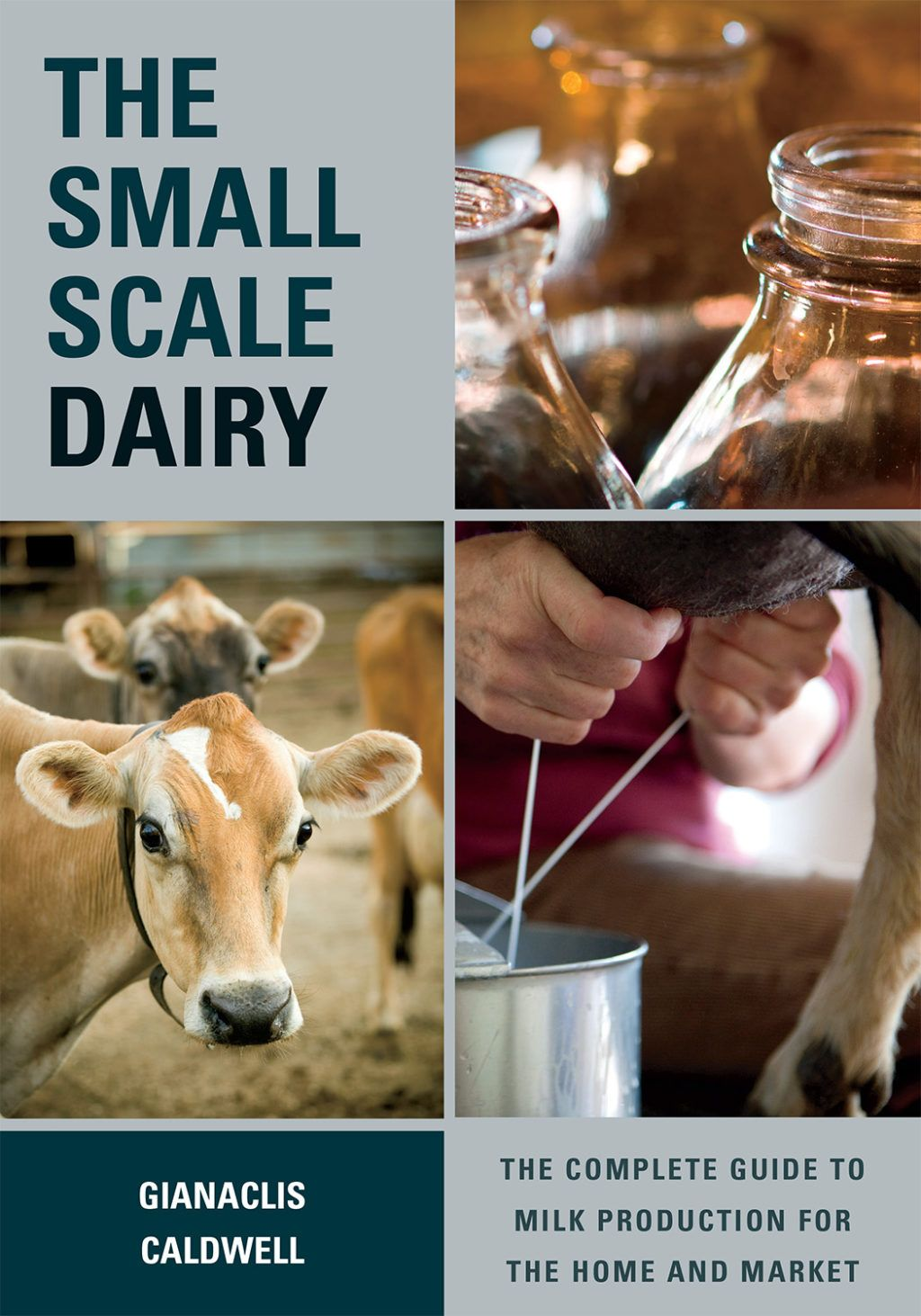 The SmallScale Dairy in 2020 Milk production, Dairy