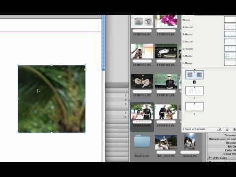How to Use InDesign Template Tutorial | InDesign | Pinterest ...