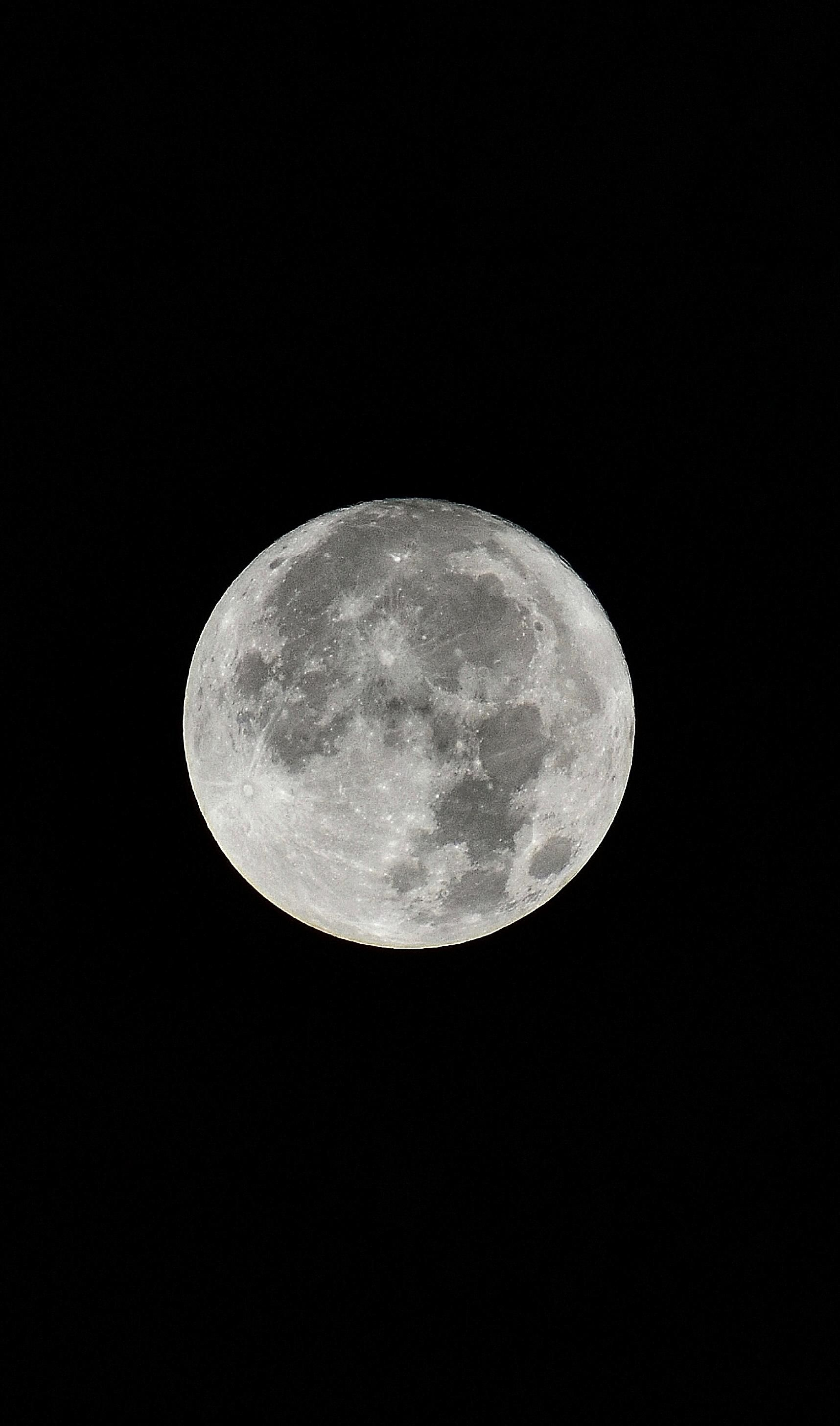 560+My shot of the Supermoon with a D3400 1716x2910