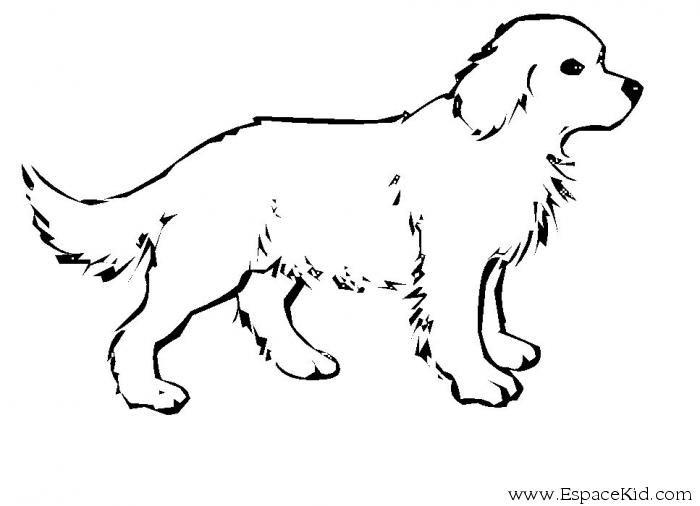 Coloriage chien colorier dessin imprimer tatoo - Chat facile et gratuit ...