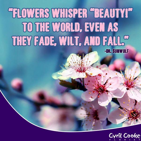 Wedding Flowers Quote