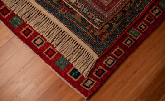 There's nothing like a luxuriously appointed room with soft carpeting, but without professional area rug cleaning in Puyallup maintaining it in time will prove challenging. We go to extreme lengths to protect these exquisite investments from spills, mud and other visible dirt, but what about those things that we don't see?