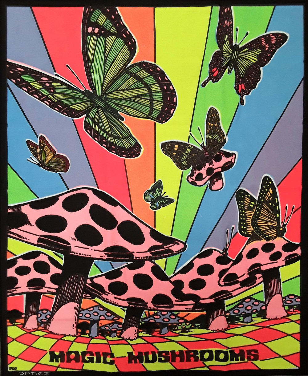 Butterflies And Mushrooms