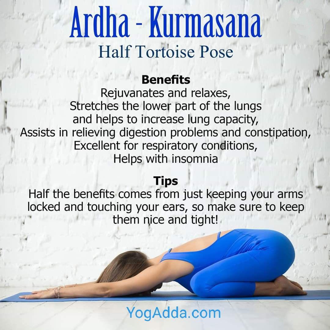Ardh Kurmasana Half Tortoise Pose Yoga Asanas Wellness Yoga Yoga Benefits