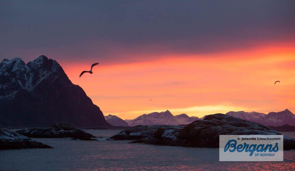 Zonsopkomst Lofoten. Ik werk hier aan een fotoreportage over het Noorderlicht maar het licht is hier voortdurend adembenemend!!! Je komt niet aan slapen toe...