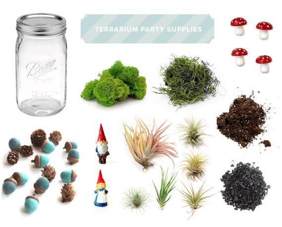 Terrarium Party Supplies 100 Layer Cakelet Cakelet Kids Crafts Diy Pinterest Terraria