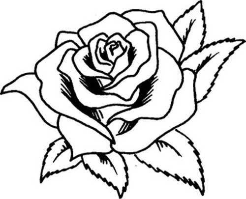 Dibujos De Flores Para Colorear Pintar E Imprimir Flores 6: 25 Desenhos De Flores Para Pintar/Colorir: Imprimir Ou
