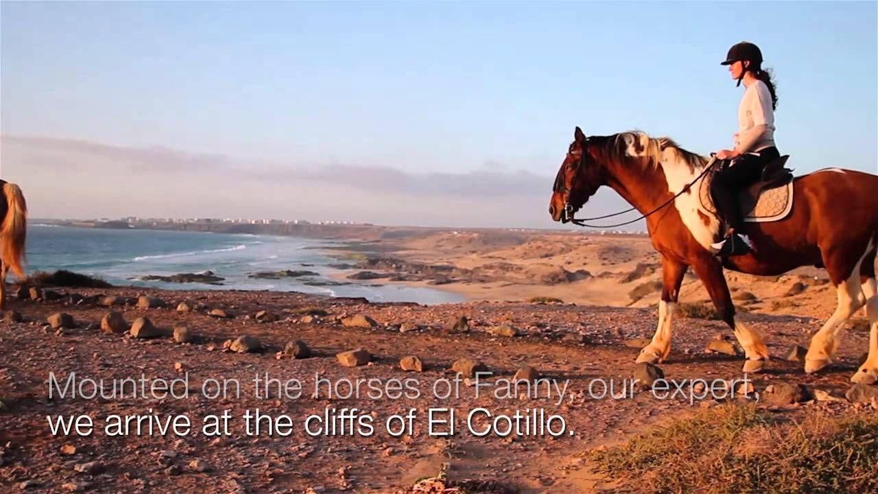www.bahiazul.com A different sunset! - Bahiazul Experience - http://bahiazul.com/experiences/caballos-fanny  #horses #Fuerteventura #bahiazulexperiences #experienciasbahiazul #adventure #aventura #holiday #vacaciones #Spain #España